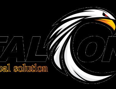 LOGO fALCON société pétrolière